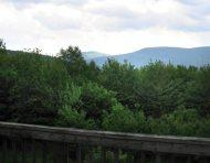 Belleayre Mountain Views Vacation Rental in Pine Hill , NY