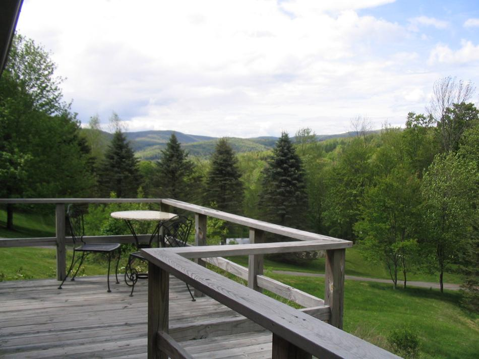 Too Happy Cabin Vacation Rental in Margaretville, 12455
